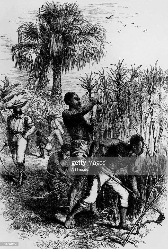a history of slavery in the confederate states of america Reader's companion to american history, by eric foner and john garrity census data can be appealed to in order to determine the extent of slave ownership in each of the states that allowed it in 1860.