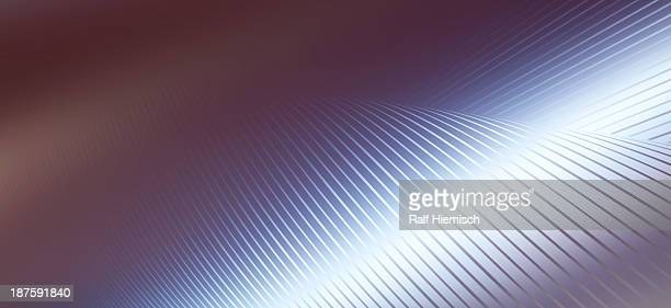 Lines on a curved surface