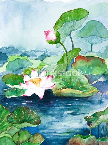 Lotus Flower Watercolor Painted Stock Illustration Thinkstock