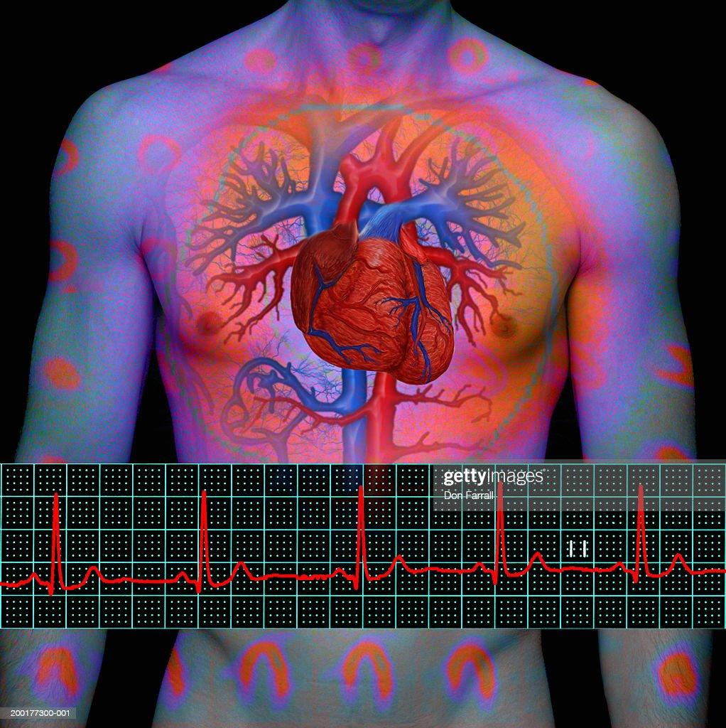 Man with enhanced heart beside ECG printout (Digital Composite) : Stock Illustration