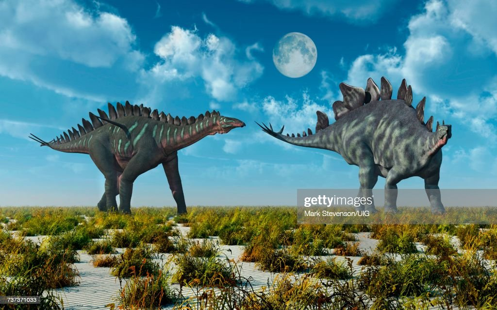 Miragi& Stegosaurus Dinosaurs.Both Alive During Earths Juassic ErOf Time. : Stock Illustration