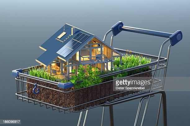 Model of a house on grass in a shopping cart