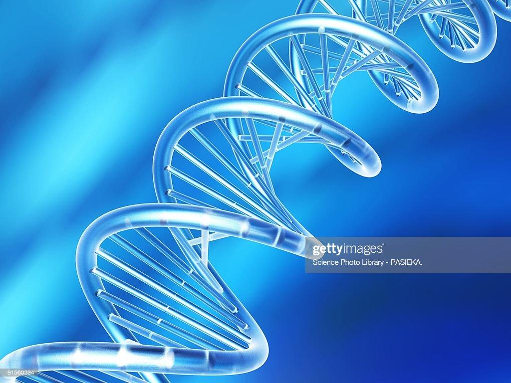 DNA molecule : Stock Illustration