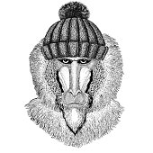 Wild animal wearing winter knitted hat Image for tattoo, badge, t-shirt