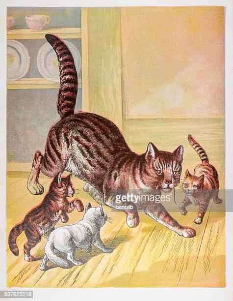 Mère de chat et de la souris chassed de chatons