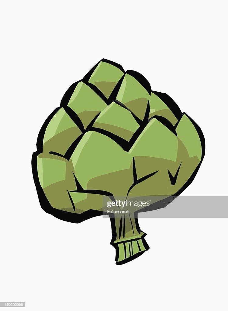 One whole fresh artichoke : Stock Illustration
