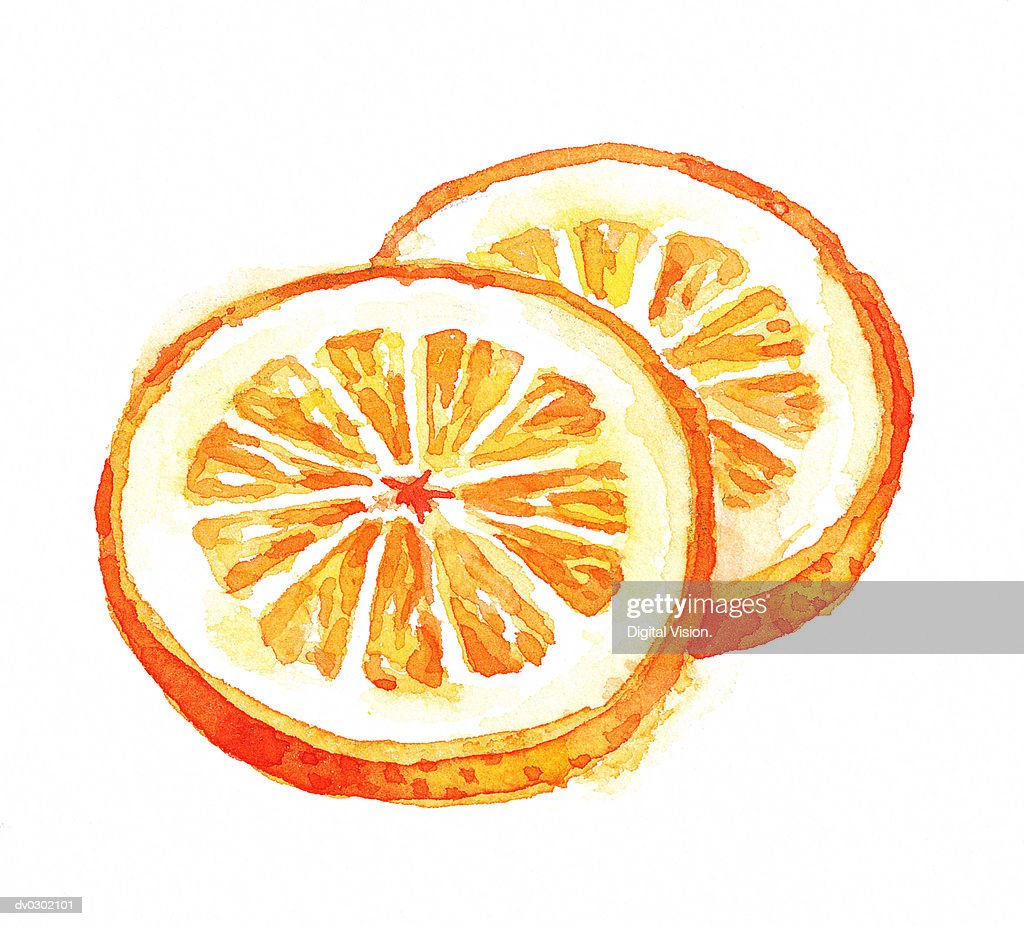 Orange Slices : Stock Illustration