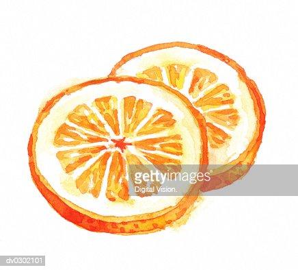 Orange Slices : Stock Illustration