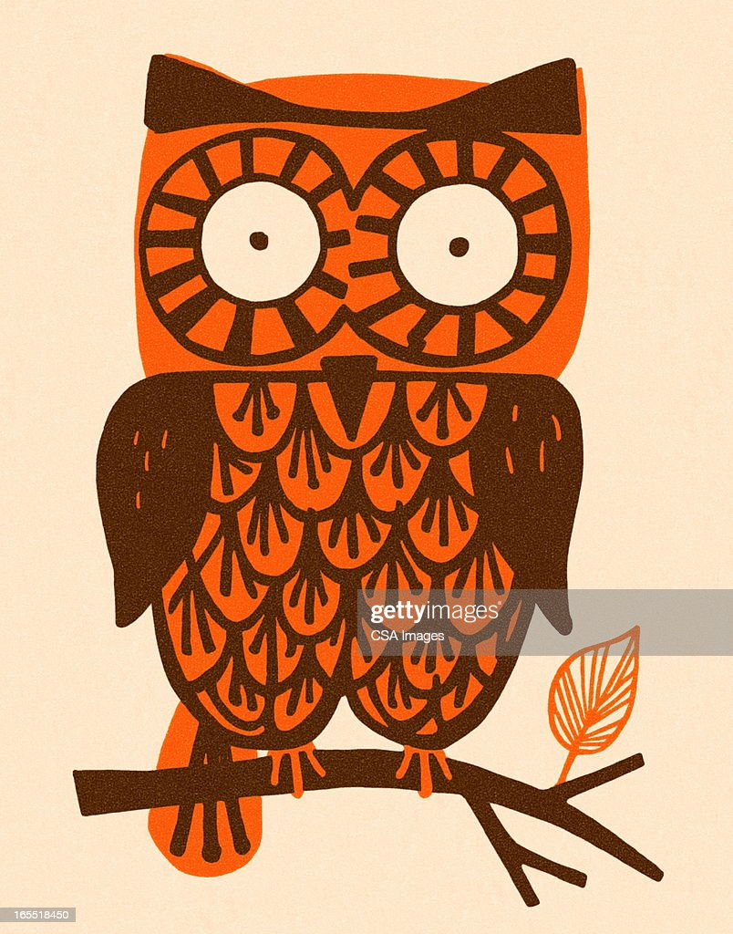 Owl : Stock Illustration