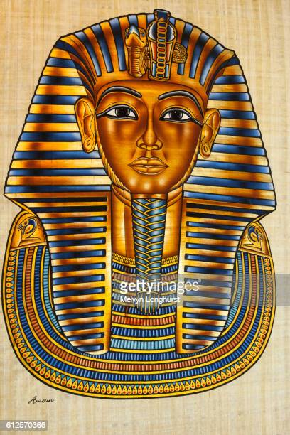 was tutankhamun murdered essay Anti essays offers essay  scientists have tried to unravel ancient clues as to why the boy king  tutankhamun's  believed that king tut was murdered,.