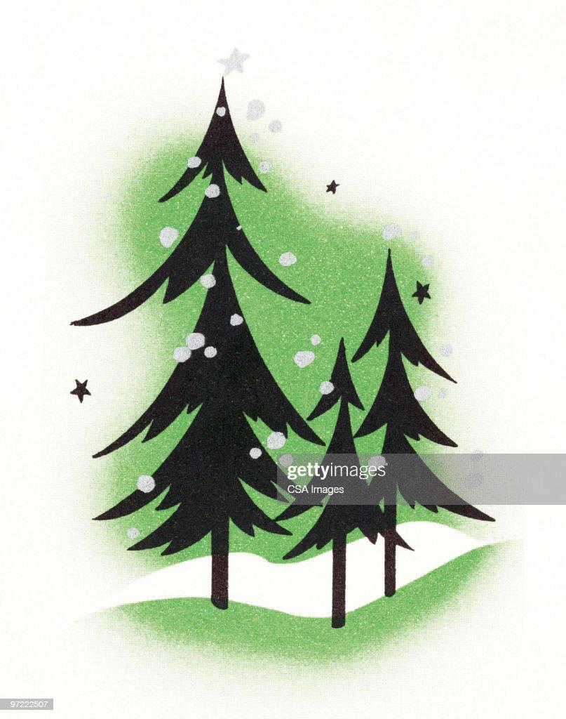 Pine trees : Stock Illustration