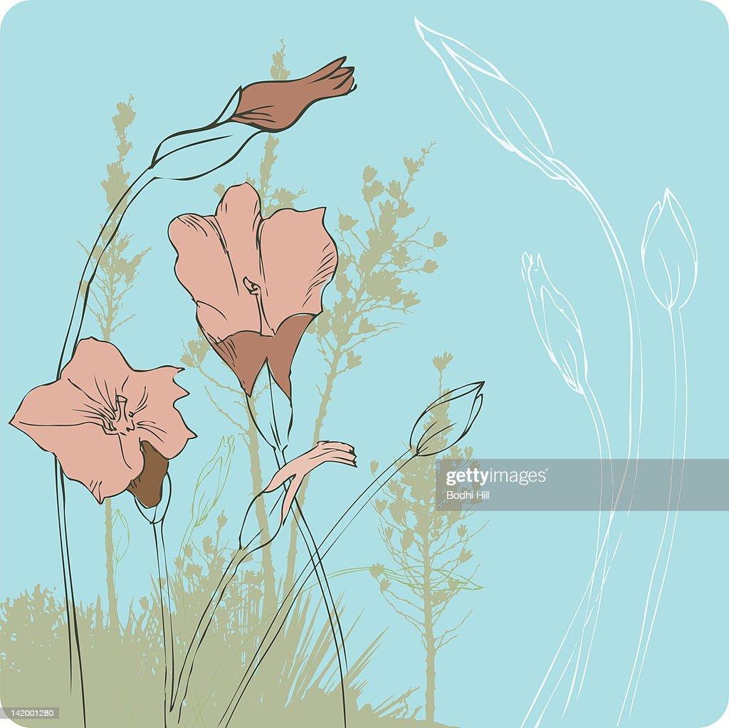 Pink Blooms on Blue : Stock Illustration