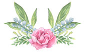 pink peony flower watercolor illustration with twigs for decoration
