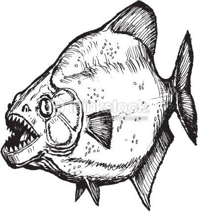 Piraña Dibujo Arte vectorial   Thinkstock