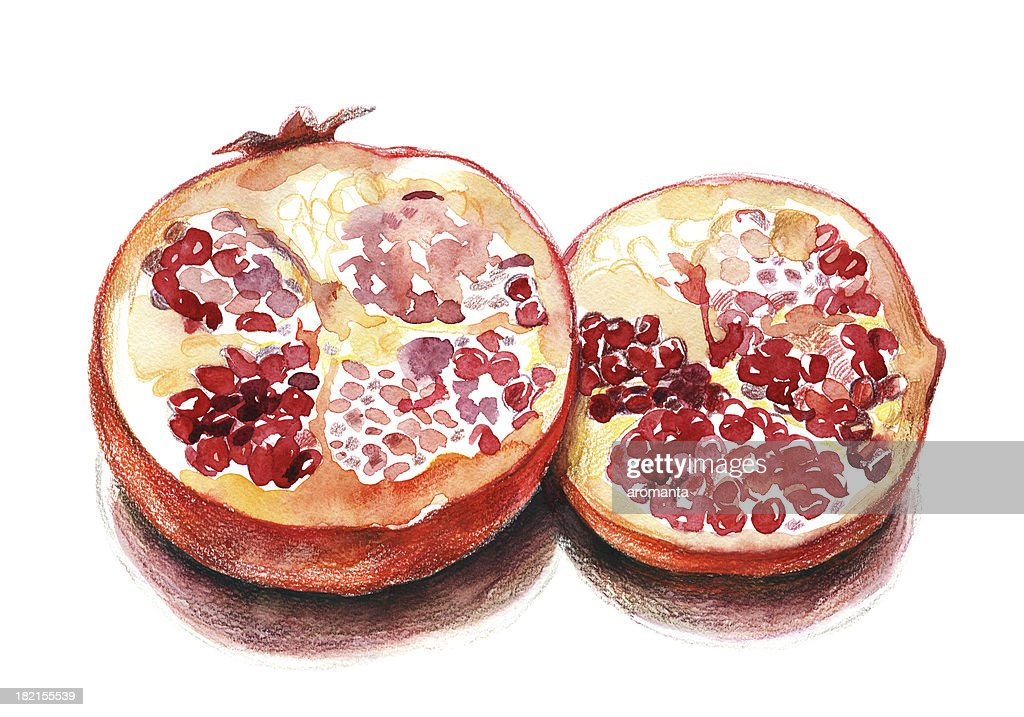 Pomegranate : Stock Photo