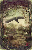 Raven or vulture flying through night forest