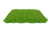 3D Rendering green grass field isolated on white background