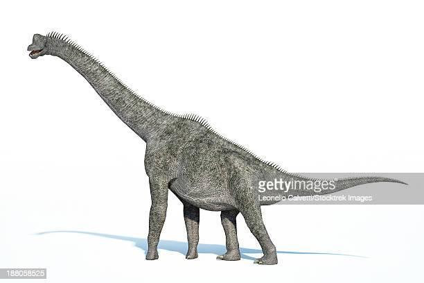 3D rendering of a Brachiosaurus dinosaur.