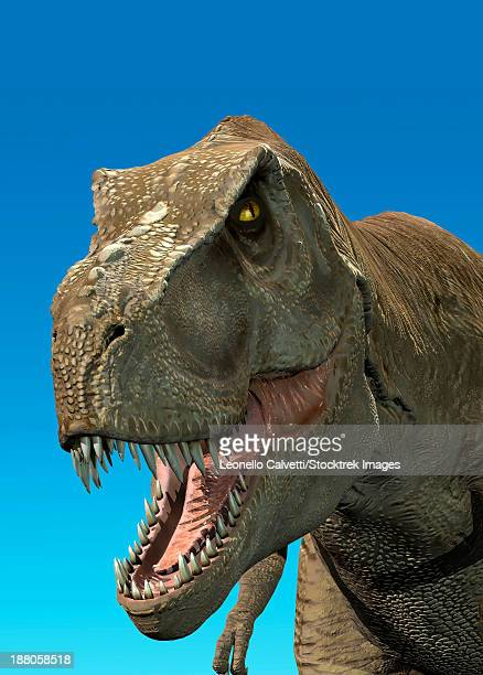 3D rendering of Tyrannosaurus Rex, close-up.