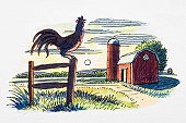 Rooster on gate post, in front of farm building and rising sun