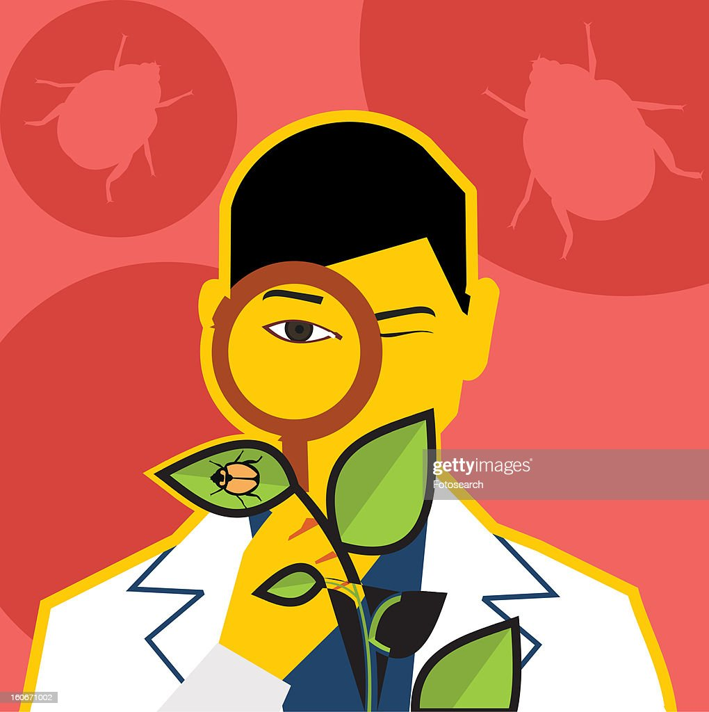 A scientist looking bug through magnifying glass : Stock Illustration
