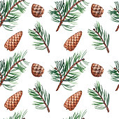 Seamless pattern with pine branches and cones. Forest illustration. Watercolor on white background.