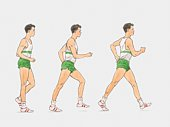 Sequence of illustrations showing male athlete racewalking