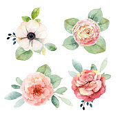 Set boutonnieres with anemones and roses isolated on white background. Watercolor illustration