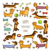 cute cartoon illustrations of a happy playful dog