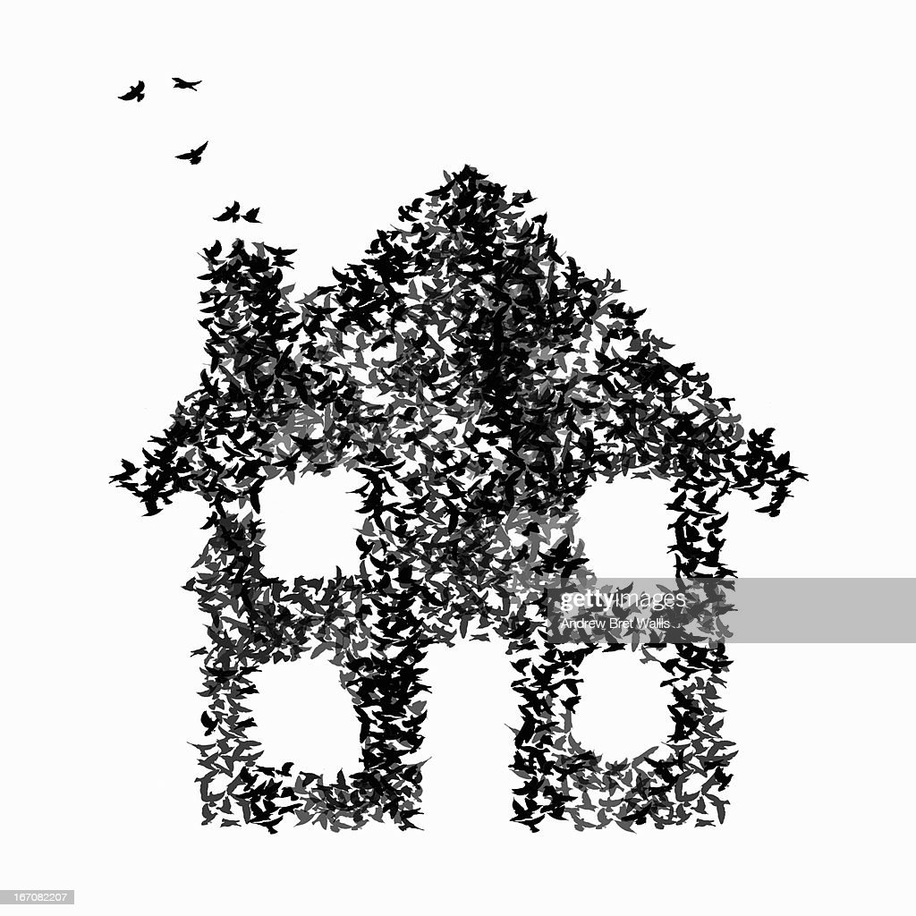 Shape of a house formed from birds in flight : Stock Illustration