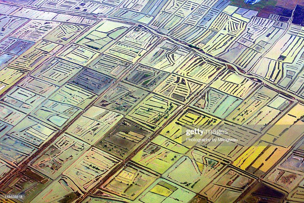 Shrimp farm mosaic : Stock Illustration