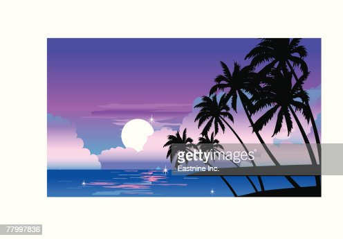 Silhouette of palm trees at dusk : Vector Art