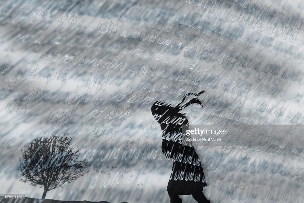 Silhouetted person in a windsept landscape : Stock Illustration