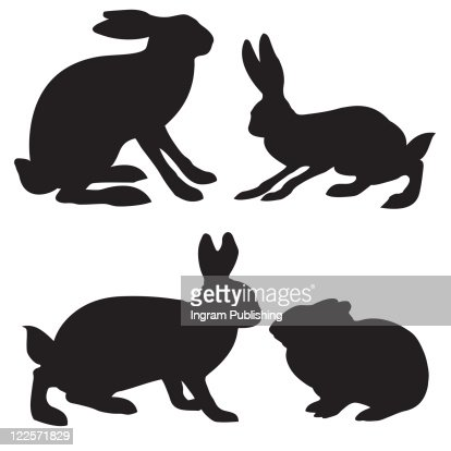 silhouettes hare and rabbit on white background : Vector Art