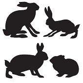 silhouettes hare and rabbit on white background