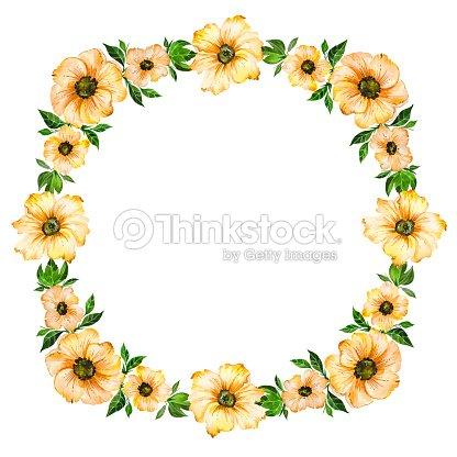 Ilustración Floral Primavera Bellas Flores Amarillas Con Hojas De ...