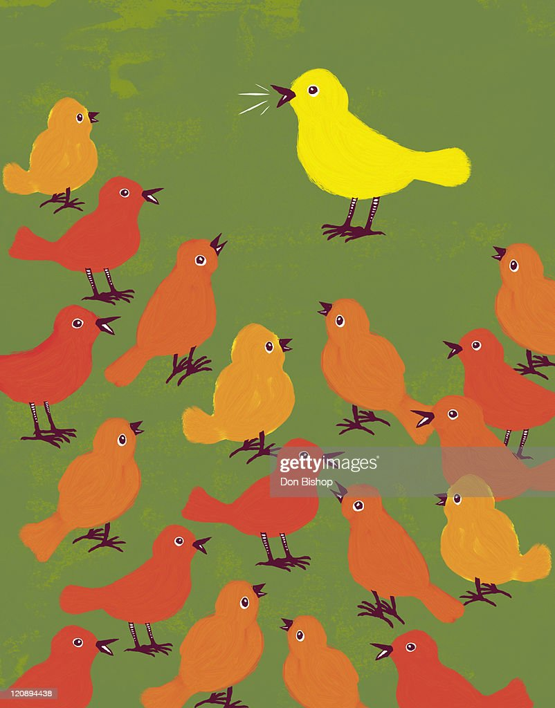 Stand Out Flock Birds : Stock Illustration