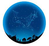 Star Sign, Capricorn
