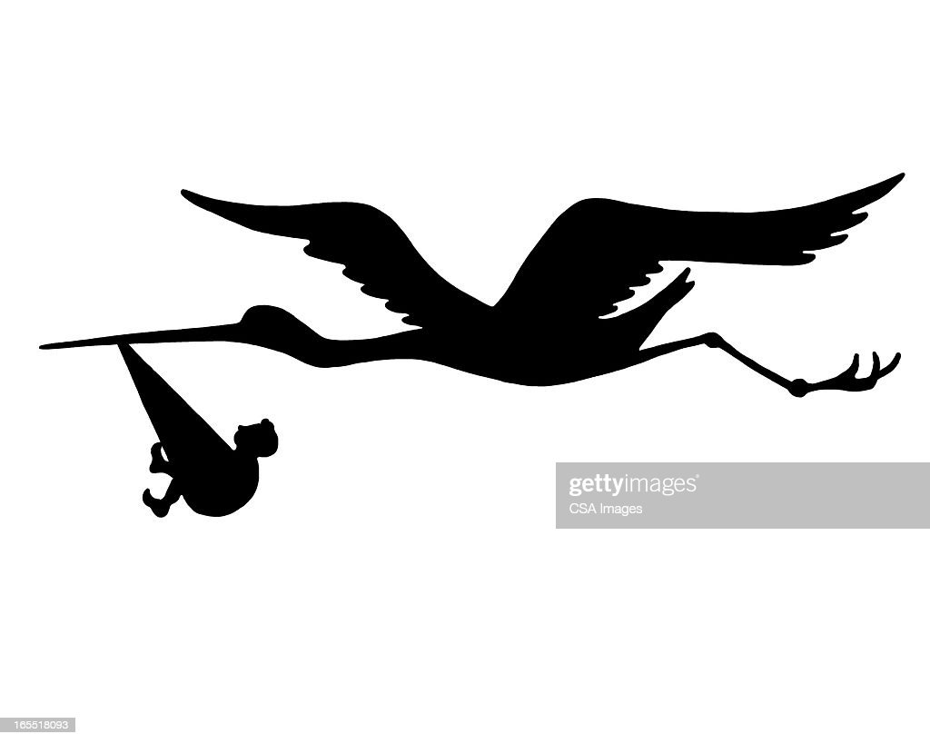 Stork Carrying a Baby : Stock Illustration