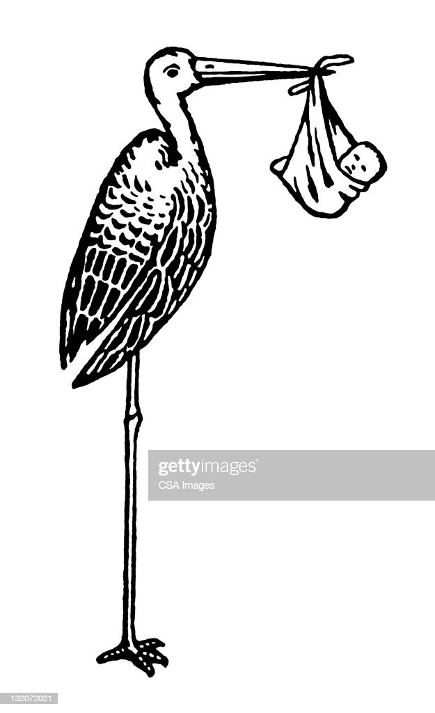 Stork Holding Baby : Stock Illustration