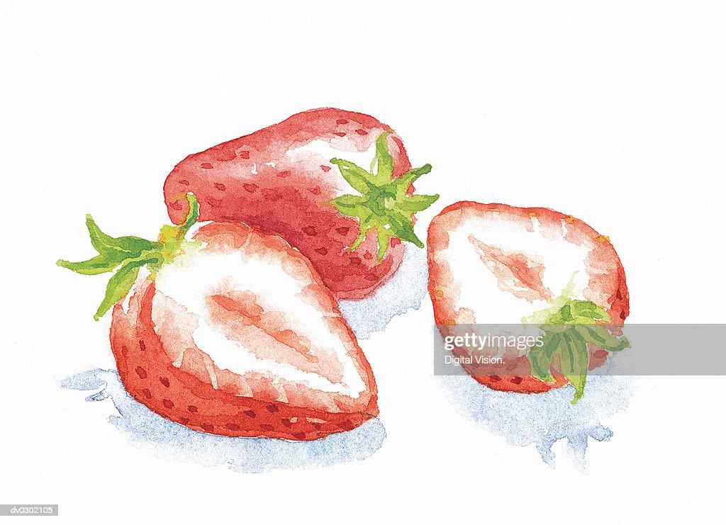 Strawberries : Stock Illustration