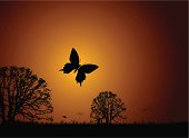 Sunset nature scene with butterfly and silhouette trees