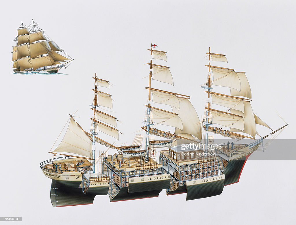 Tea Clipper, 1860s, expanded cross-section : Stock Illustration