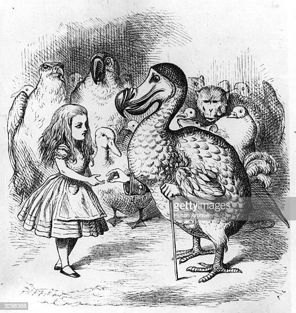 The dodo presenting Alice with a thimble in an illustration by Tenniel from the 1st edition of 'Alice in Wonderland' by Lewis Carroll