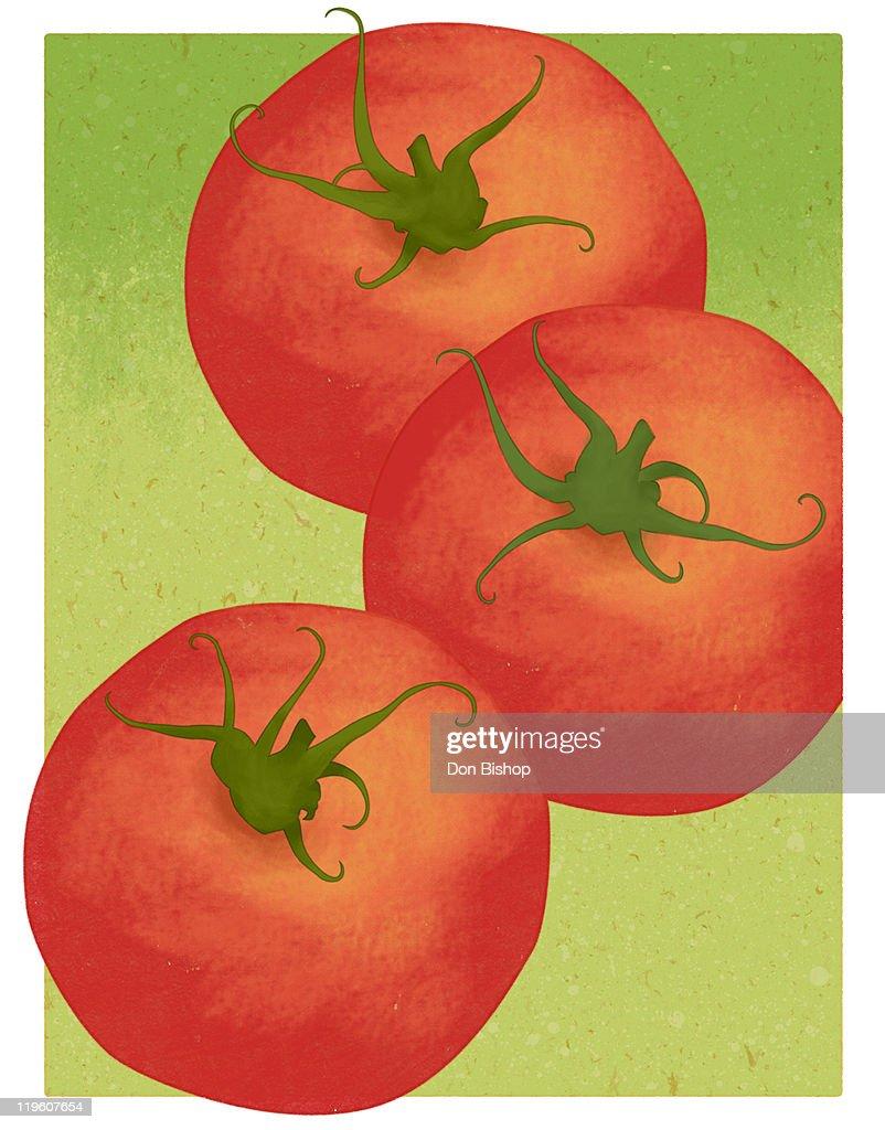Tomato : Stock Illustration