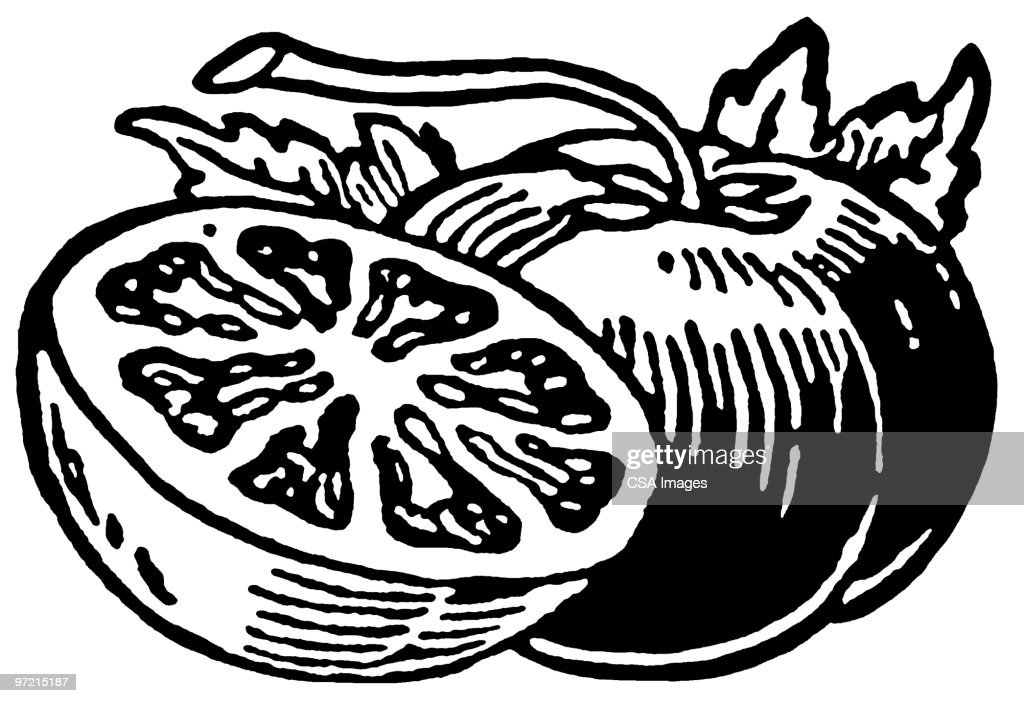 Tomato : Stock Illustration