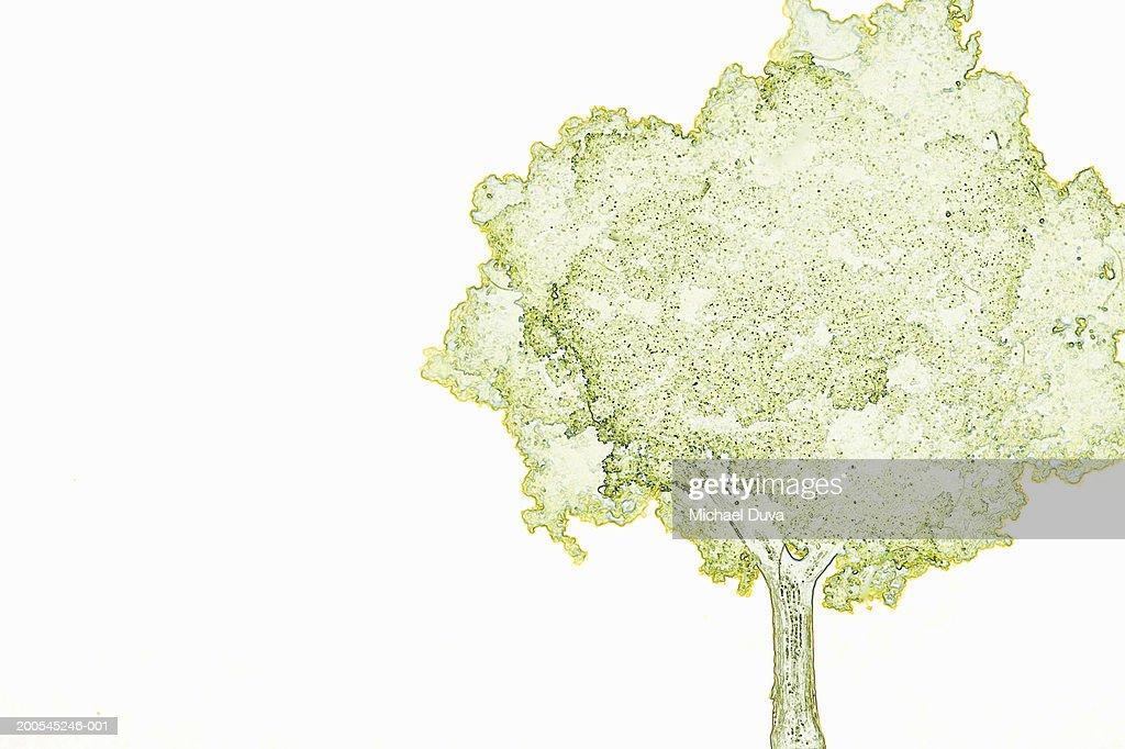 Tree against white background : Stock Illustration