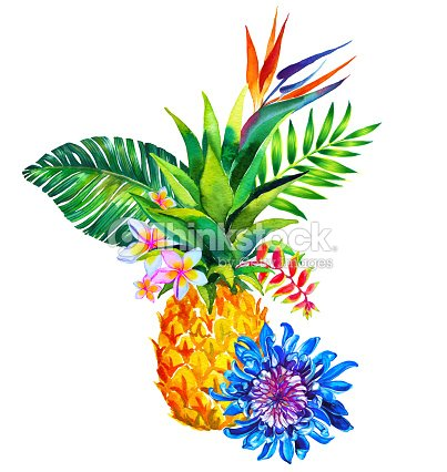 Tropical Bouquet Qith Pineapple Stock Illustration
