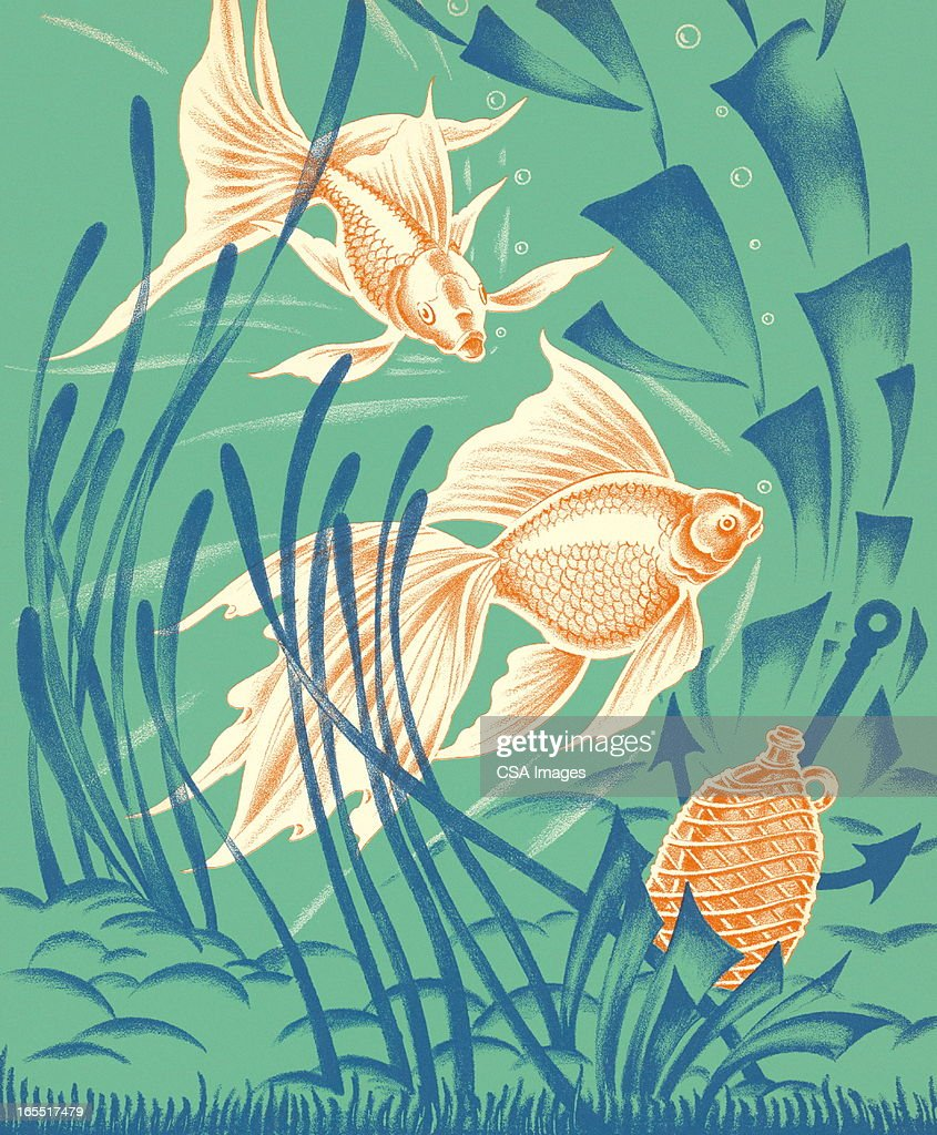 Tropical Fish : Stock Illustration