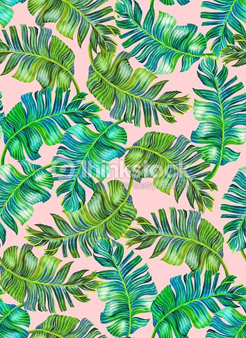 Tropical Foliage Pattern Banana Palm Leaves Stock Illustration